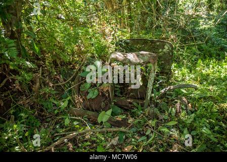 WWII remains on Mushu Island, Papua New Guinea - Stock Image