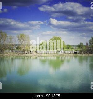 Lake - Stock Image