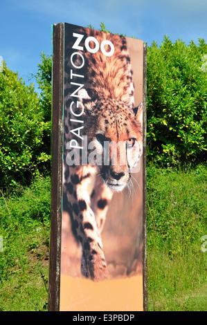 Paignton Zoo sign, Paignton, Torbay, Devon, England, UK - Stock Image