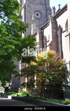 St. Paul's Episcopal Cathedral, Side View, Church Street, Downtown Buffalo, NY - Stock Image