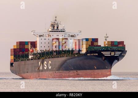 MSC Katyayni - Stock Image