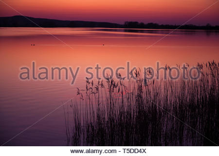Romantic Lake - Stock Image