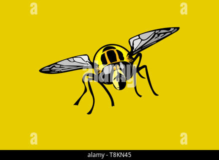 Isolated colour Illustration of Footballer hoverfly head-on on gold background. - Stock Image