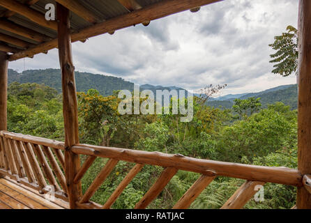 view from deck of room in Buhoma Community Haven Lodge of Bwindi Impenetrable National Forest Park, Uganda, Africa - Stock Image