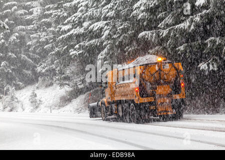 Snow plow and cinder truck plowing road and dropping cinders on curve during snowstorm on Tombstone Pass, Cascades, - Stock Image