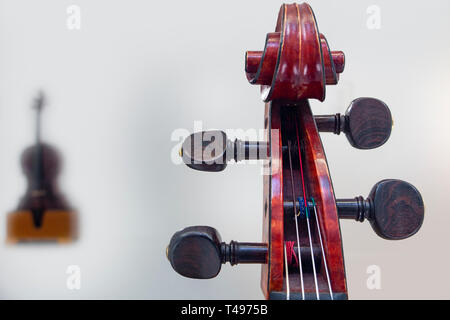 Cellos in a white room - Stock Image