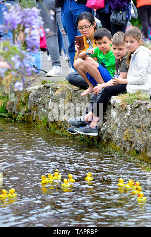 Loose Village, Kent, UK. 27th May, 2019. The annual Bank Holiday Duck Race, organised by the Loose Amenities Association on Loose Brooks, the stream running through the centre of the historic Kent village. Credit: PjrFoto/Alamy Live News - Stock Image