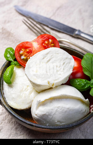 Soft white Italian cheese Mozzarella buffalo served with fresh tomato and green basil leaves on white background - Stock Image