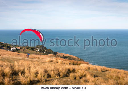 Paraglider stays on a hill slope, Christchurch, New Zealand - Stock Image