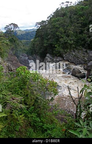 Namorona River, Ranomafana National Park, Madagascar, Africa. - Stock Image