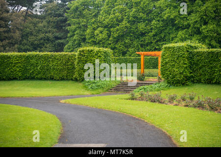 Green trees in the backgraound at park in Ireland - Stock Image