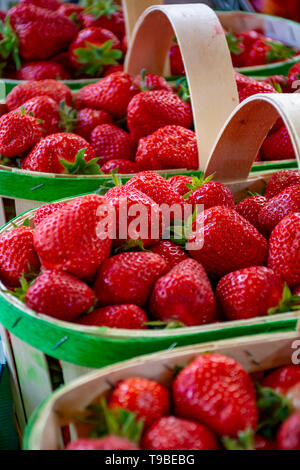 Fresh ripe sweet French strawberry in wooden basket, new harvest - Stock Image