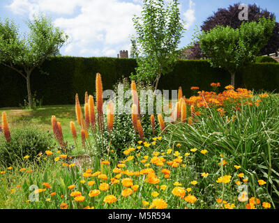 Flower gardens at the historic medieval grounds and buildings of Penshurst Place. - Stock Image