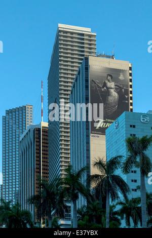 Downtown Miami high-rises reflect the blue tones of twilight. Florida, USA - Stock Image