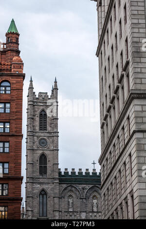 Clocktower of Notre Dame Basilica in the Old Montreal, surrounded by the tower of old stone and brick buildings. The basilica is the main cathedral of - Stock Image
