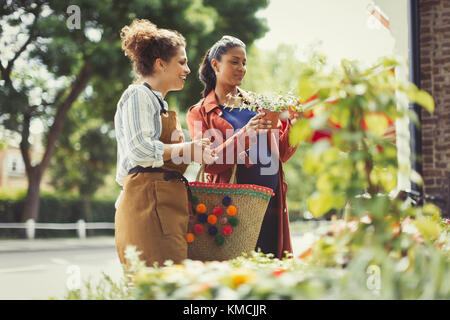 Female florist helping pregnant shopper with potted plants at flower shop storefront - Stock Image