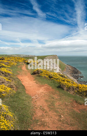UK, Wales, Swansea, Gower, Rhossili, Coast path at Worms Head - Stock Image
