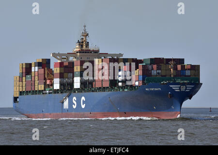MSC Fortunate passing Cuxhaven - Stock Image