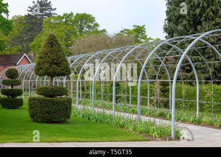 Arched plant climbing frame in botanical gardens - Stock Image