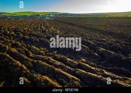 A freshly ploughed field in North Yorkshire on a sunny January morning - Stock Image