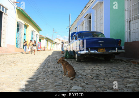 Cuba Trinidad Dog in front of 1956 Ford Fairlane American classic car Photo CUBA0929 Copyright Christopher P Baker - Stock Image