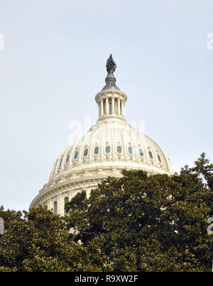 View of Cupola and Statue of Freedom on the US Capitol, Washington DC - Stock Image