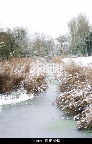 Frozen stream in Winter, UK - Stock Image