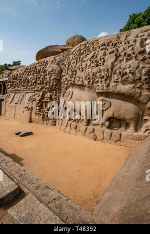 Vertical view of the spectacualr Arjuna's Penance at Mahabalipuram, India. - Stock Image