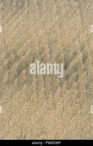 Low tide ripple marks in wet beach sand. - Stock Image