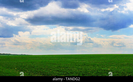 Summer landscape with a view of the boundless field and sky with clouds - Stock Image