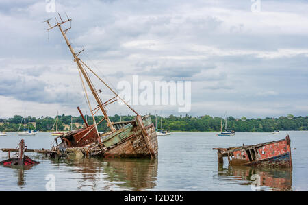 boat wrecks on the river orwell pin mill suffolk - Stock Image