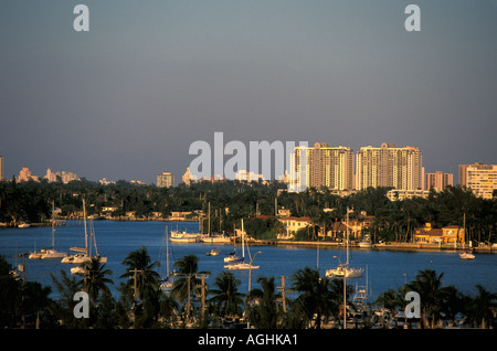 Miami Beach Florida FL sailboats coconut palm trees horizontal late afternoon - Stock Image