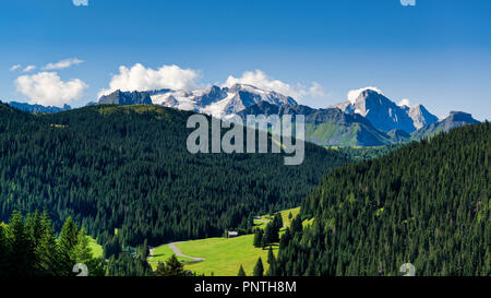 Summer landscape of glacier Marmolada with forest in foreground in a clear morning of August, Dolomites - Italy - Stock Image