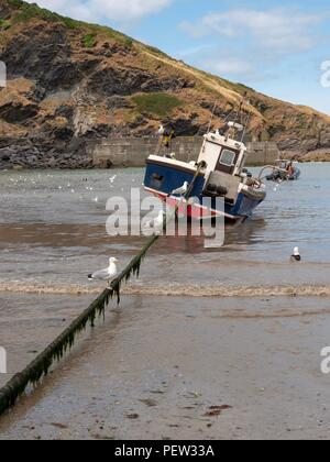 A fishing boat at anchor in the harbour at Port Isaac in Cornwall - Stock Image