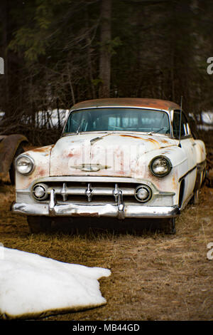 A 1953 Chevrolet Bel Air 2-door sedan, in a wooded area, in Noxon, Montana  This image was shot with an antique Petzval lens and will show signs of di - Stock Image