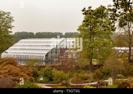 The Glasshouse at RHS Wisley, Woking, Surrey, England - Stock Image
