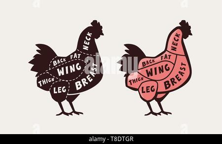 Cut of meat, chicken. Poster butcher diagram and scheme, vector illustration - Stock Image