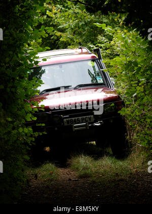Land-Rover green laning on a bridleway, Chettle, Dorset, UK - Stock Image