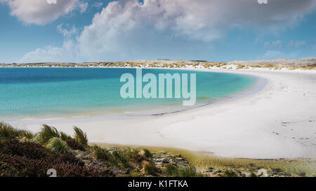 White sandy crescent beach of Yorke Bay on East Falkland Island, Falkland Islands. Clear turquoise water and blue sky with fluffy clouds. - Stock Image