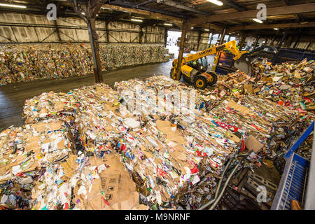 Bales of recycled cardboard and plastic in a large council-run warehouse and a yellow forklift truck grabbing a pile of rubbish at the recycling plant - Stock Image