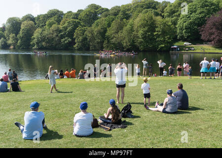 A Martin House Hospice charity event dragon boat race taking place in Roundhay Park, Leeds, Yorkshire, England, UK - Stock Image