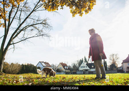 Old woman and pet dog with toy at park - Stock Image