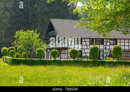 Deutschland, NRW, Städteregion Aachen, Eifel, Monschau-Röhren, Fachwerkhaus - Stock Image