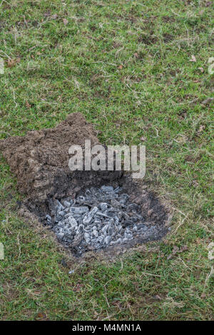 Grass turf cut away to form a shallow pit for a covert survival fire which 'leaves no trace'. Wood ashes - Stock Image