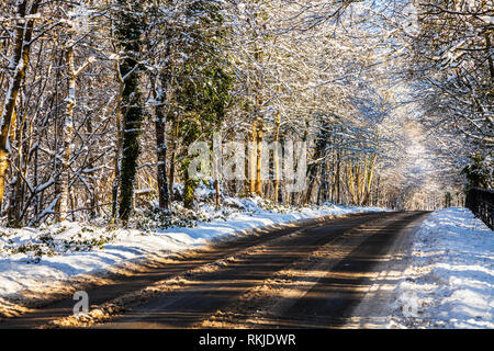 A snowy winter's day along a country road in Wiltshire. - Stock Image