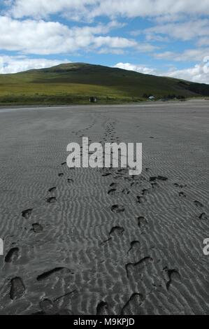 Footsteps in the Sand - Stock Image