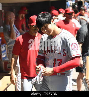 Los Angeles Angels designated hitter Shohei Ohtani prepares for an at-bat in the dugout during the Major League Baseball game against the Minnesota Twins at Target Field in Minneapolis, Minnesota, United States, May 15, 2019. Credit: AFLO/Alamy Live News - Stock Image
