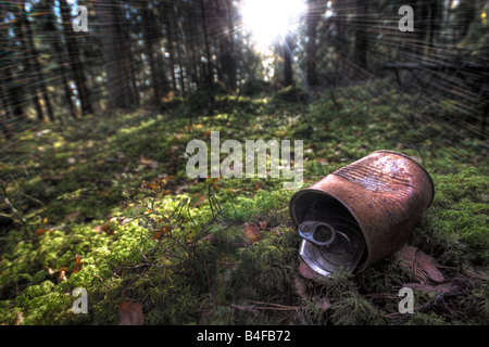 Rusty tin can in forest - Stock Image