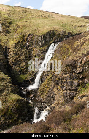 A section of the Grey Mare's Tail or Roaring Linn waterfall, near Moffat, Dumfries & Galloway, Scotland, UK - Stock Image