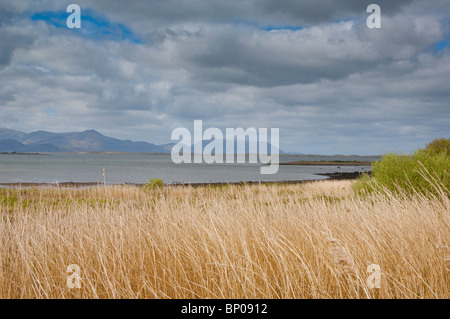 brewing storm over estuary - Stock Image